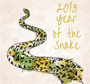 year-of-the-snake