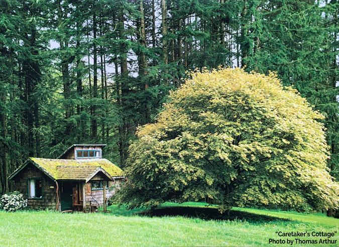 Caretaker's Cottage Photo by Thomas Arthur